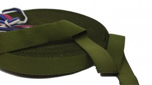 Olive Green Strap or Waistband Elastic - 1 inch - 3 Yards